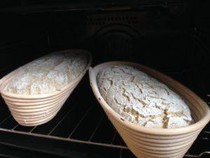 kváskový chlieb vykysnutý